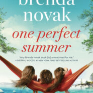 REVIEW: One Perfect Summer by Brenda Novak