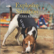 Spotlight & Giveaway: Explosive Situation by Terri Reed