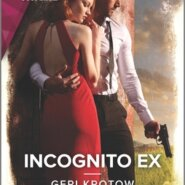 REVIEW: Incognito Ex by Geri Krotow