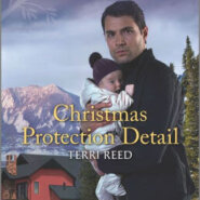 Spotlight & Giveaway: Christmas Protection Detail by Terri Reed