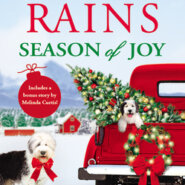 REVIEW: Season of Joy by Annie Rains