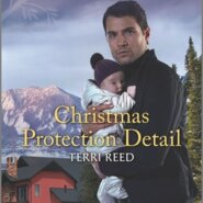 REVIEW: Christmas Protection Detail by Terri Reed
