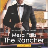 REVIEW: The Rancher by Joanne Rock