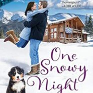REVIEW: One Snowy Night by Patience Griffin