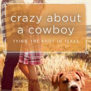 REVIEW: Crazy About a Cowboy by Dylann Crush