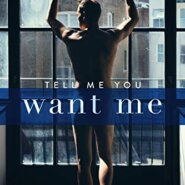REVIEW: Tell Me You Want Me by Willow Winters